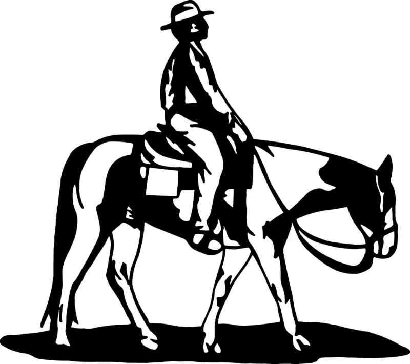 Paint/Pinto Western Pleasure Trail Horse Decal #234